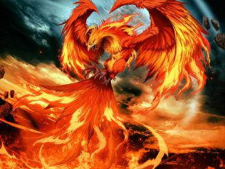 world on fire phoenix art