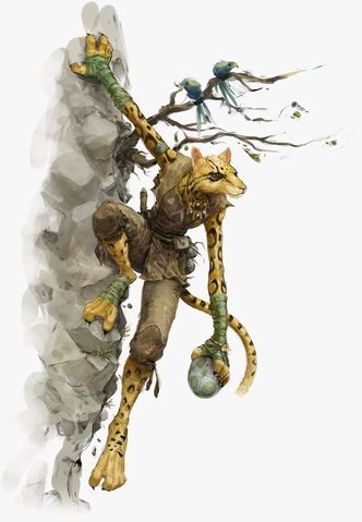 tabaxi art from volo's guide to monsters