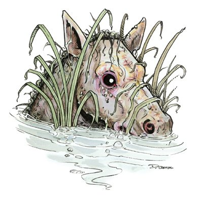 Kelpie art from DnD 3.5e