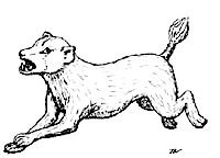 Blink dog from 1e, looks most dog-like except with a more otter-like face