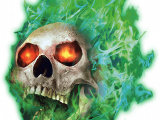 a flaming skull with green flames and orangy-red eyes